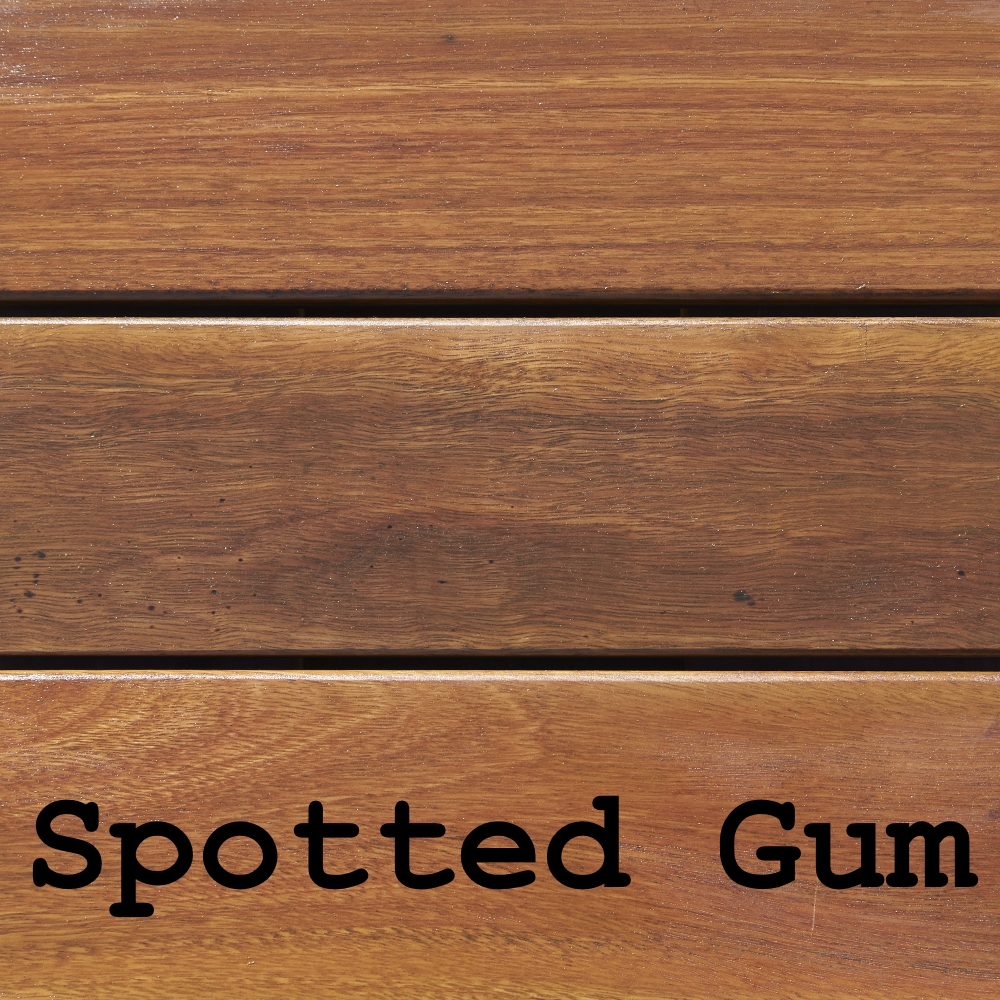 Spotted Gum 2